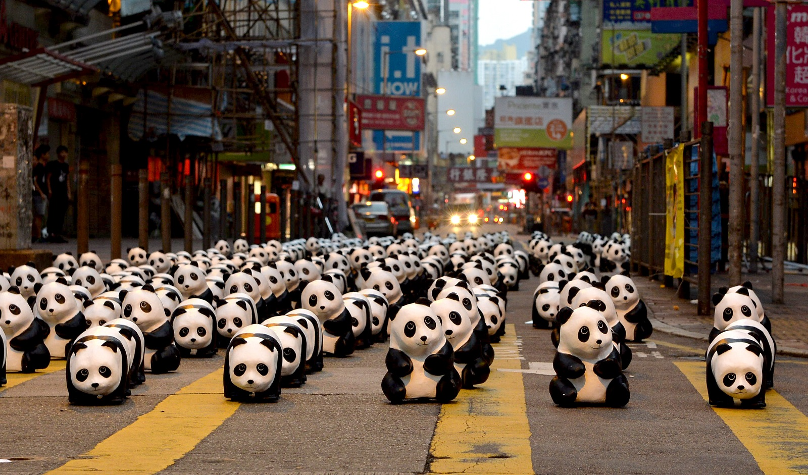 1600 Panda Sculptures display in Mong Kok, Kowloon.  (2014)
