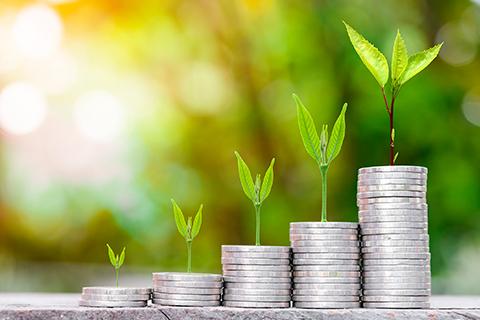 跨机构督导小组宣布推进香港绿色和可持续金融策略